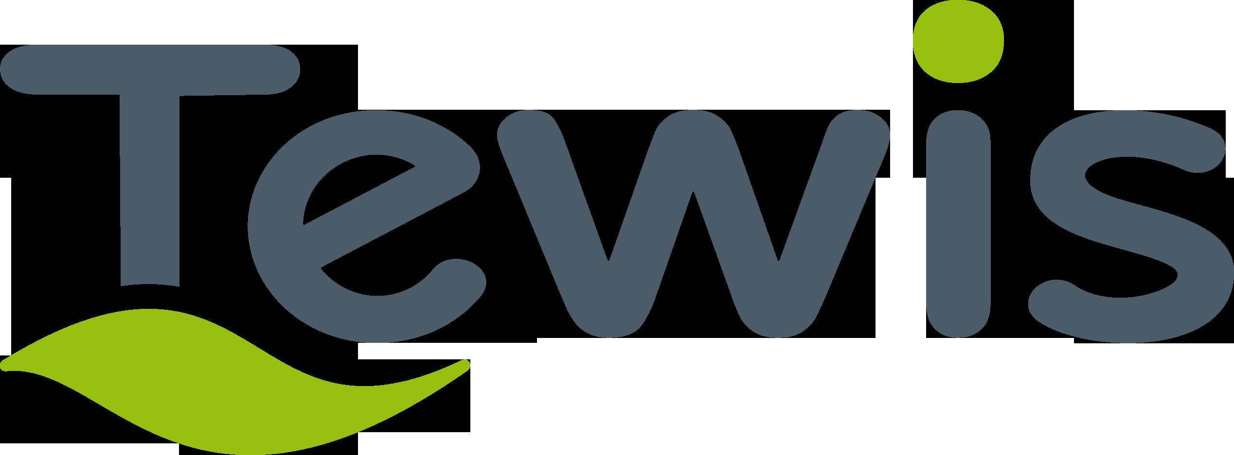 LogoTewis2011